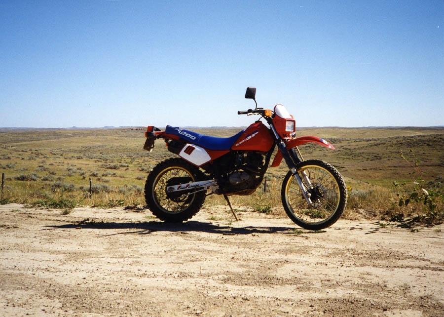 1994 Rmx 250 Weight Loss